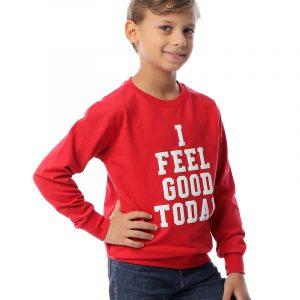 Printed Boys Sweatshirt